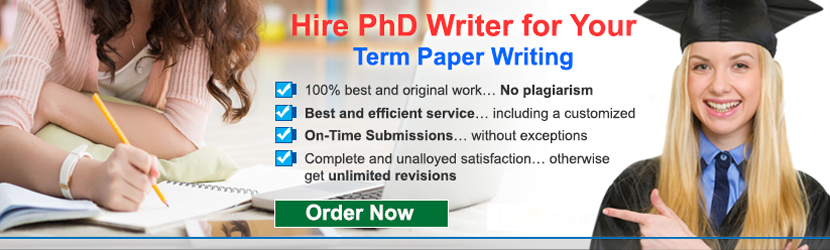 Term Paper Writing Guide UK